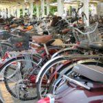 幼稚園で教えてもらえなかった常識!?有料駐輪場に自転車を置いても撤去される時代。